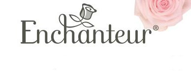 Enchanteur Logo page