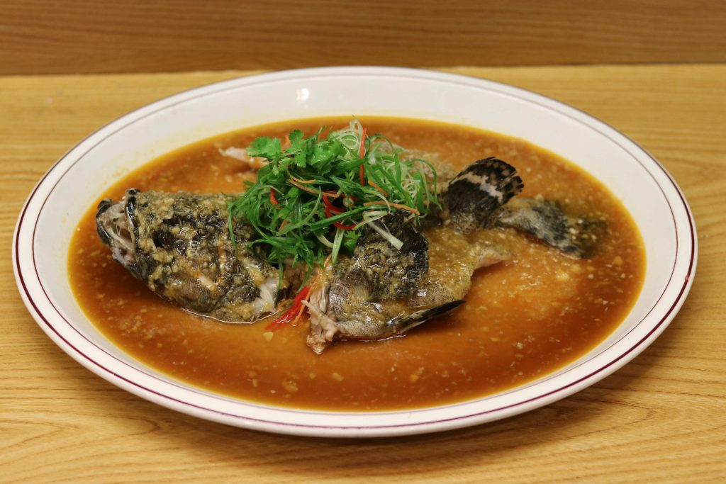 Steamed Red Garoupa with Ginger and Garlic Sauce