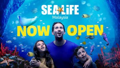 SEA LIFE at LEGOLAND now open