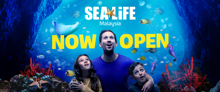 SEA LIFE at LEGOLAND now open