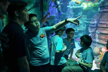 Junior Rangers exploring SEA LIFE Malaysia during their Behind the Scenes Tour of Malaysia's first interactive LEGO® themed aquarium
